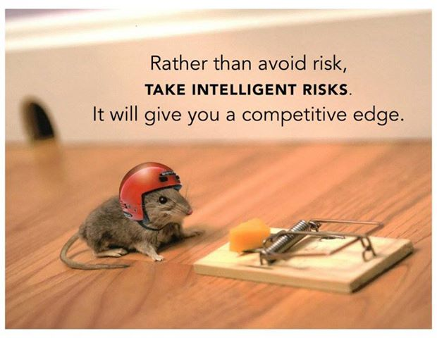 Take-Intelligent-Risks